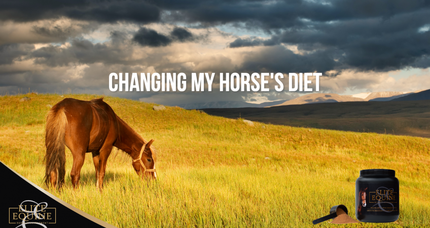 24-July-2020-Changing-my-horse-s-diet